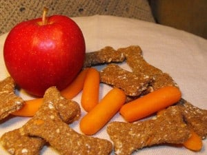 Dog treats made with carrots and oatmeal